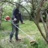 Sečení trávy - obrázek 2